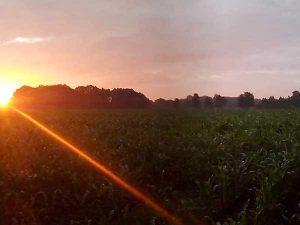 zondsondergang in de omgeving van Mini Camping Twekkelo